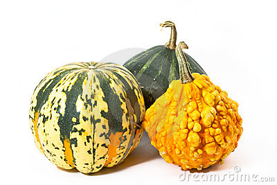 Three pumpkins before white background