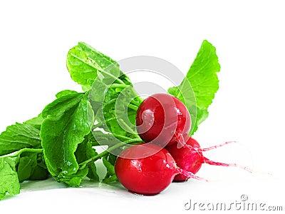 Three red radishes