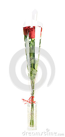 Free Three Red Roses In A Vase Royalty Free Stock Image - 51920476