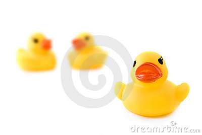 Three rubber yellow ducks