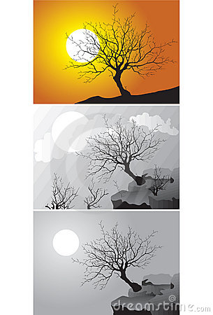 Three Scenes of tree