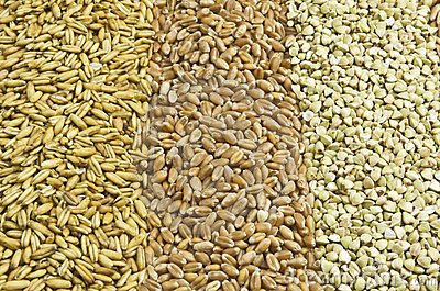 Three sorts of grain
