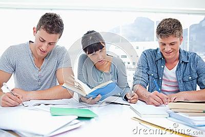 Three students study hard together
