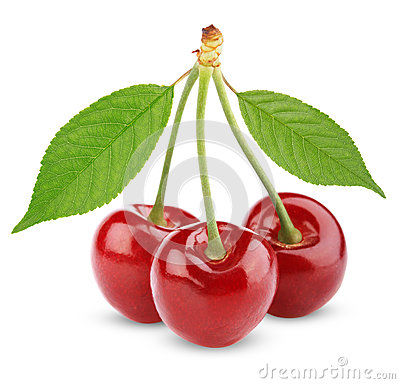 Three sweet cherries with leaves