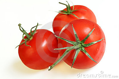 Three Vine Tomatoes