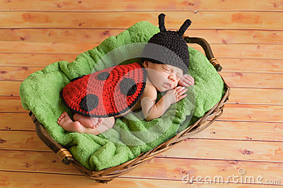 Three week old baby girl wearing ladybug costume