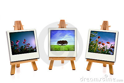 Three white painting canvas holding spring photos