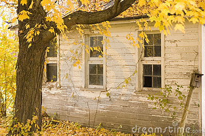Three windows in Fall