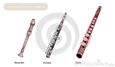 Three Woodwind Instrument Isolated on White Backgr