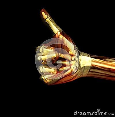 Thumbs Up X Ray 2