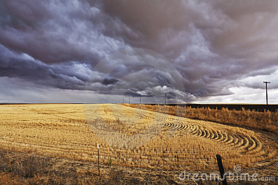 The thundercloud above a field