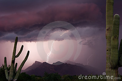 Thundershower do por do sol de Pusch Ridge