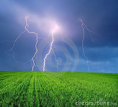 Thunderstorm with Lightning in the Field