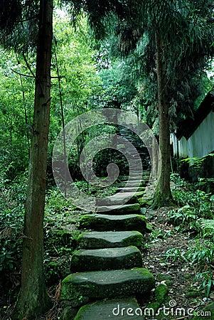 Tiantai Mountain paths