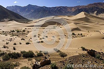 Tibet - Desert Dunes - China