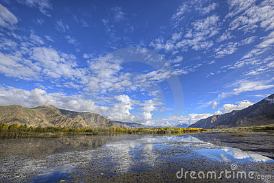 Tibet: mountain, lake and treeline