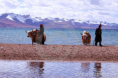Tibet s snow mountains Editorial Image