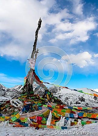 Tibet scripture flag