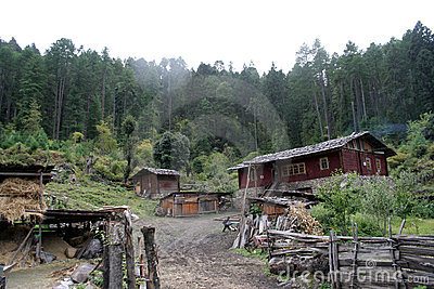 A tibet village in front of forests