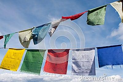 Tibetan buddhist prayer flags