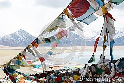 The Tibetan Budhhist Flags