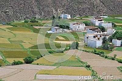 Tibetan  countryside