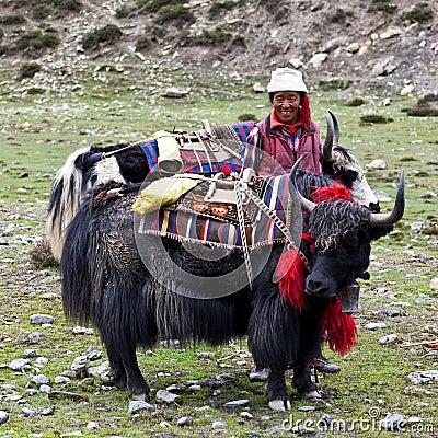 Tibetan nomad Editorial Image
