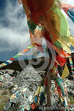 Tibetan religion supplies - wind horse s banner