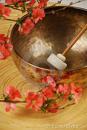 Tibetan singing bowl mallet in focus