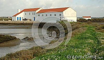 Tidal Mill