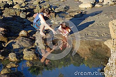 Tide Pools Near Laguna Beach Ca
