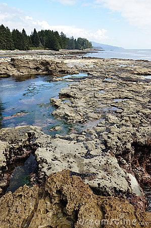 Tide pools on beach