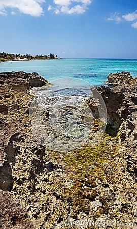 Tide pools on Grand Cayman