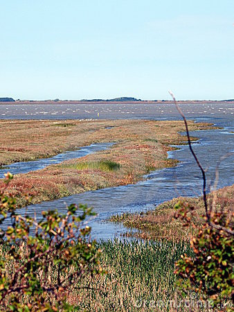 Tideland of the North-Sea-Island Borkum