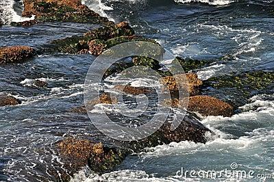 Tidewater 1