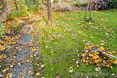 Tidying the Garden in Autumn