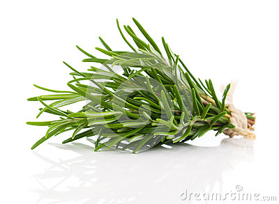 Tied fresh rosemary Stock Photo