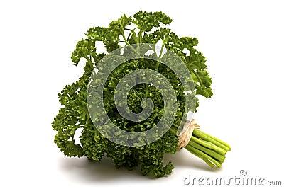 Tied parsley