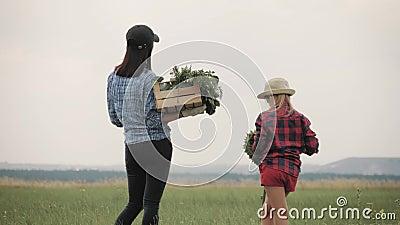 Tiempo de cosecha de madre e hija Niña divertida cosechando girasol en la granja almacen de metraje de vídeo