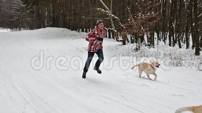 Tienerjongen die met zijn honden op een de winter bosweg lopen stock video