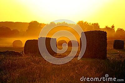 Tierras de labrantío y la puesta del sol magnífica.