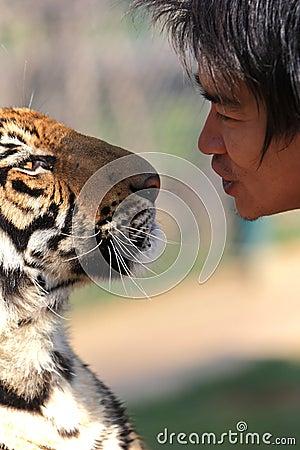 Tiger Editorial Image