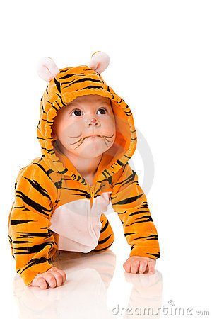 Free Tiger Baby Stock Photography - 12123652