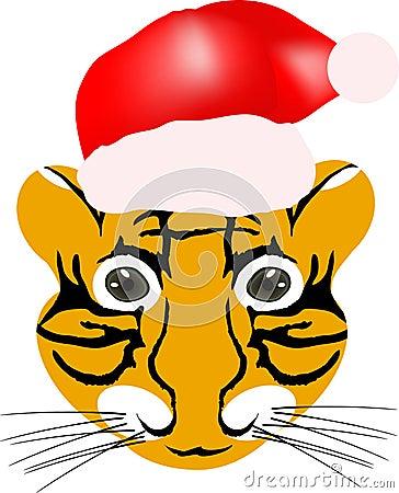 Tiger baby head 2