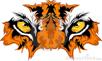 Tiger Eyes Vector Graphic