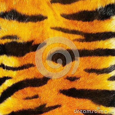 Tiger fure