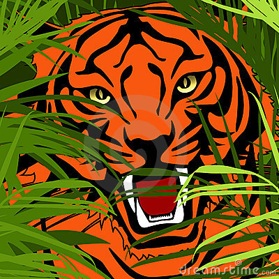 Tiger hunting in jungle