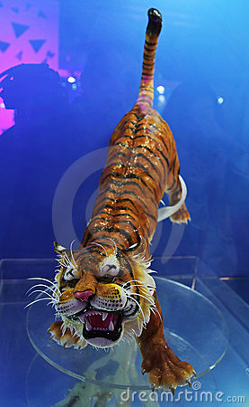 Tiger made of sugar Editorial Image