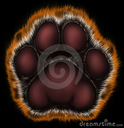 Tiger paw on black background