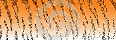 Tiger-Pelz